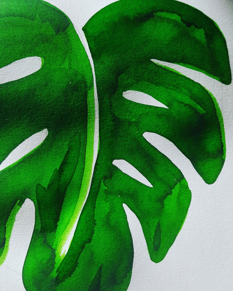 Image of Green Monstera Leaf