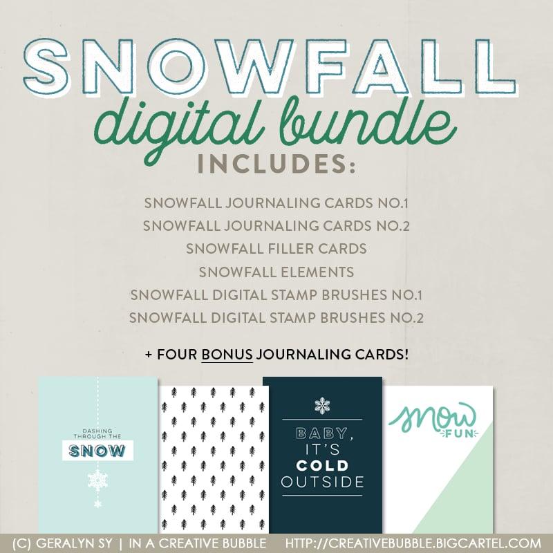 Digital File Snowfall