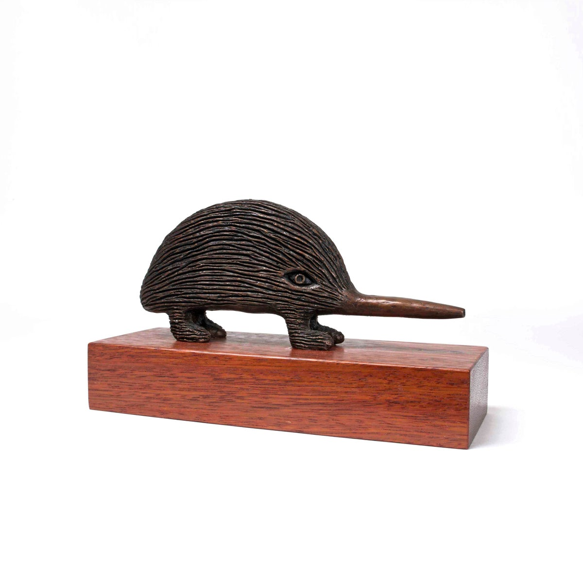 Image of Long Nosed Echidna Bronze - commission