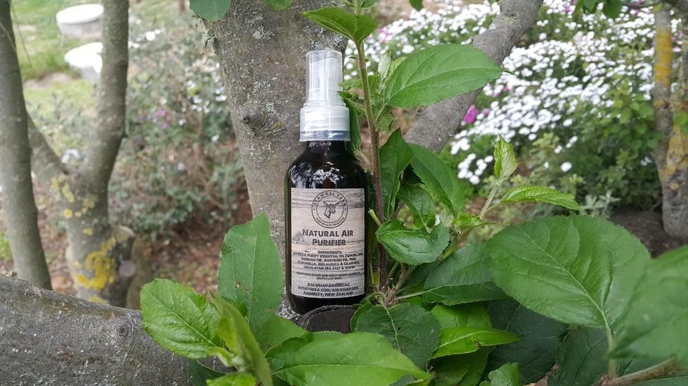 Image of Natural air purifier