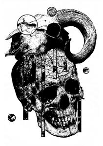 Image of Skull Print