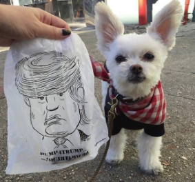 Image of Limited Edition Donald Trump Poop Bags