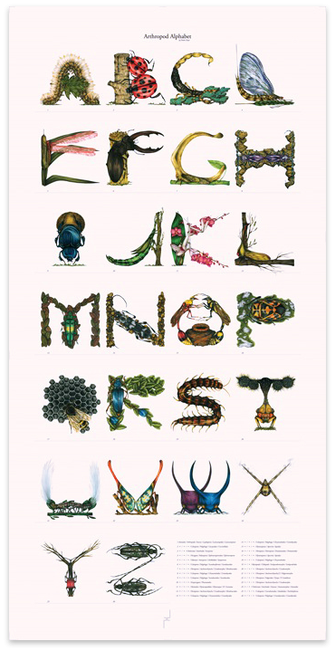 Image of Arthropod Alphabet Print