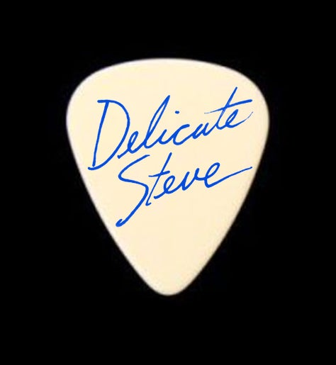 Image of This Is Steve's Guitar Pick