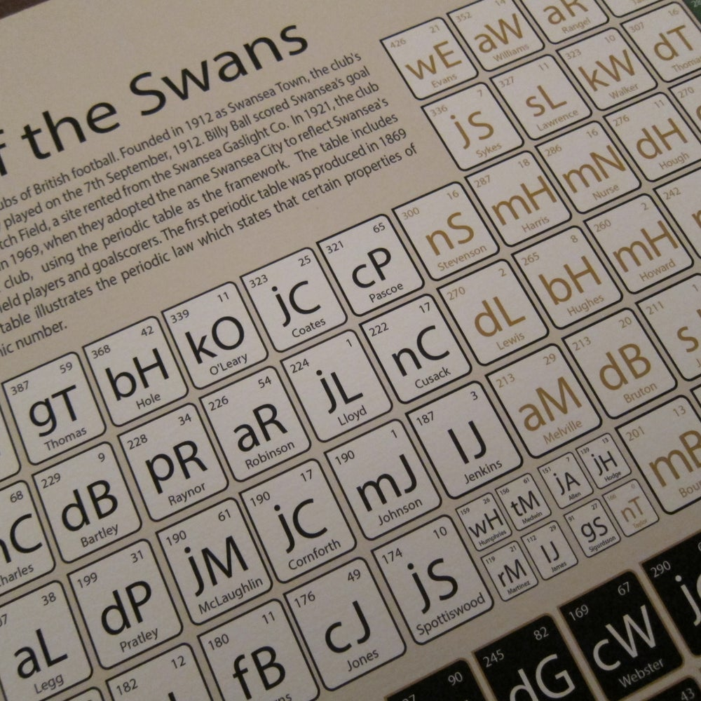 Image of Swansea - elements of the Swans