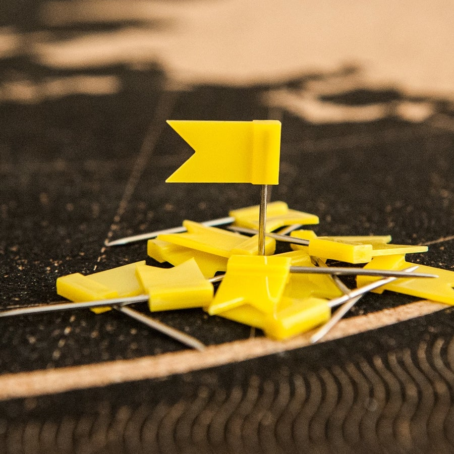 Image of Yellow Flag Pins