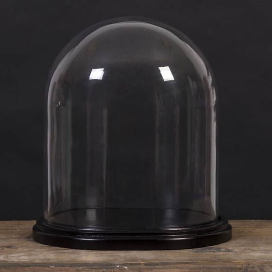 Image of Large Bell Jar