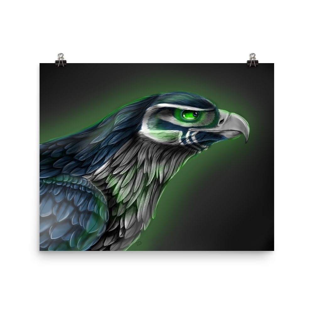 Image of Seahawk