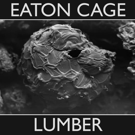 Image of Lumber CD