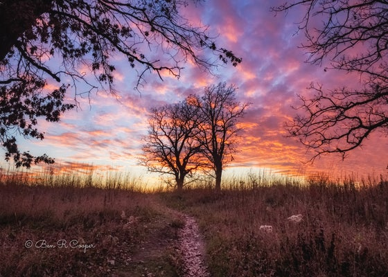 Image of Rice Creek Sunset #1