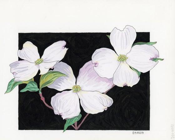 Image of Dogwood