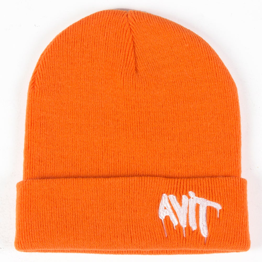 Image of AVIT CUFFED BEANIE - MORE COLOURS