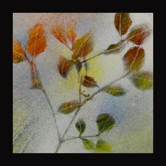 Image of AUTUMN LEAVES #2