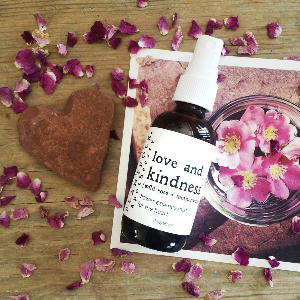 Image of Love and Kindness {wild rose + motherwort} mist for the heart