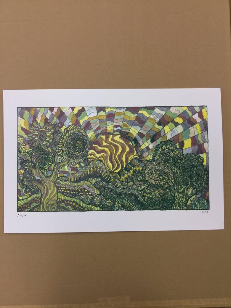 Image of M.F. Tree