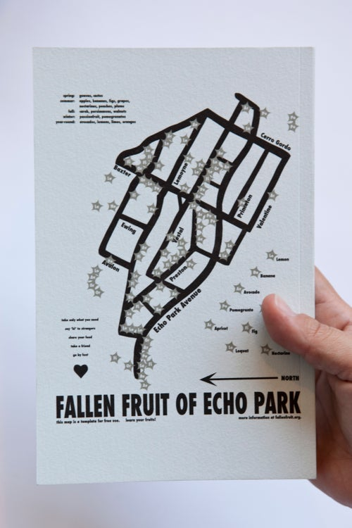 Image of Public Fruit Map (with rainbow paper) Notebook