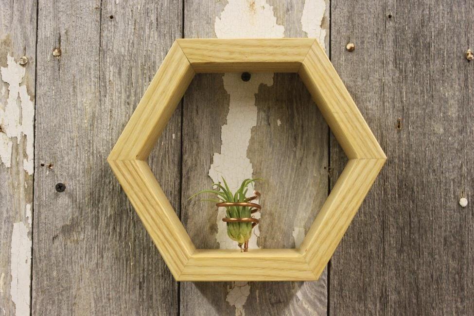 "Image of Living Hex Frame 9"""