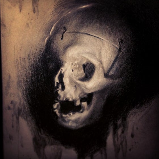 Image of 'SKULL STUDY' - Original Artwork - Graphite on grey toned paper w/ white chalk highlights
