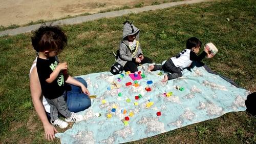 Image of Manta picnic