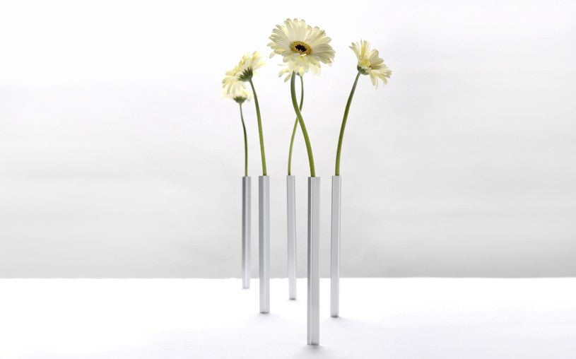 Image of Magnetic Vase