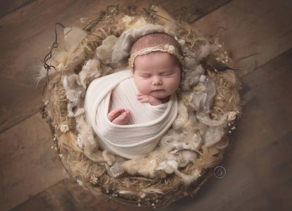 Image of Darling Newborn Bird Nest Photo Prop!  Made from PNW grapevines & jute!