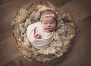 Image of Darling Newborn Bird Nest Photo Prop!  Made from PNW grapevines & jute!