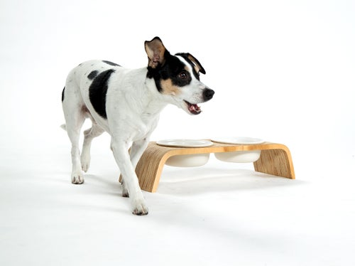 Image of Dog Bowl Stand Set: Double Short
