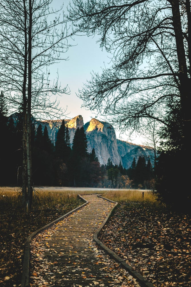 Image of Yosemite National Park Pathway to Freedom by @tjkbrown