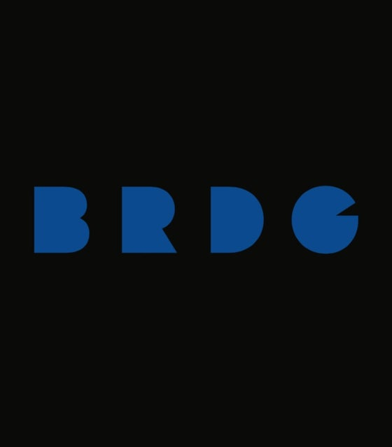 Image of BRDG 2016 Delivery