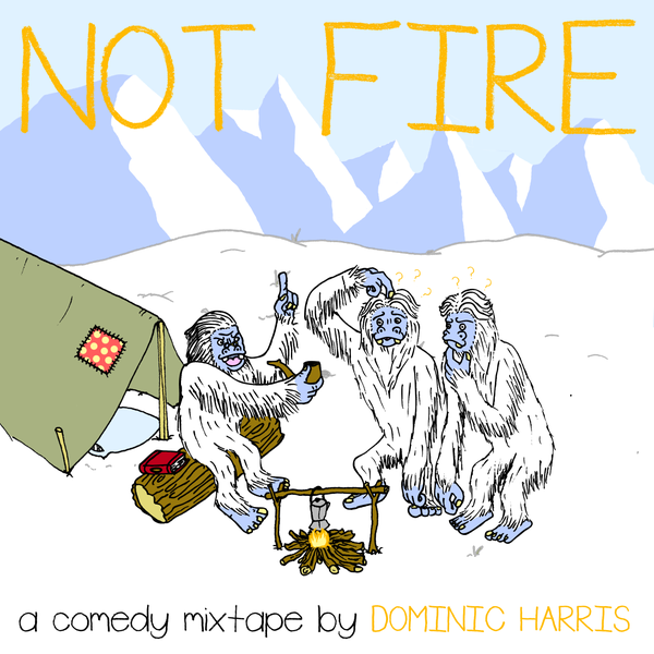 Image of NOT FIRE, THE MIXTAPE - HOLIDAY DVD BUNDLE