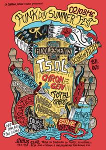 Image of PUNK diy SUMMER FEST screenprinted poster