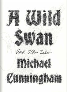 Image of ILLUSTRATED NOVEL: A Wild Swan