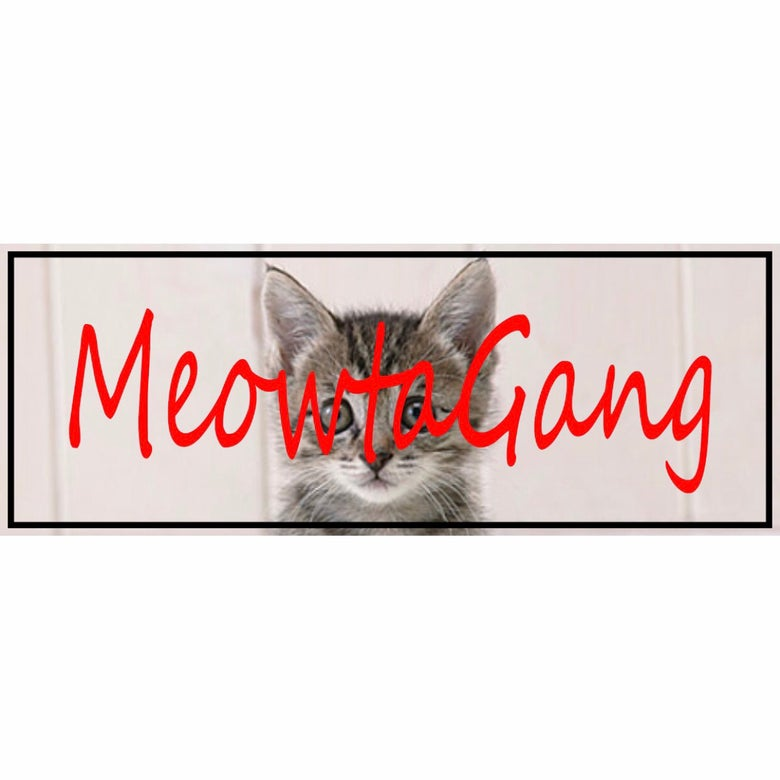 Image of Bumper Sticker - Meowtagang