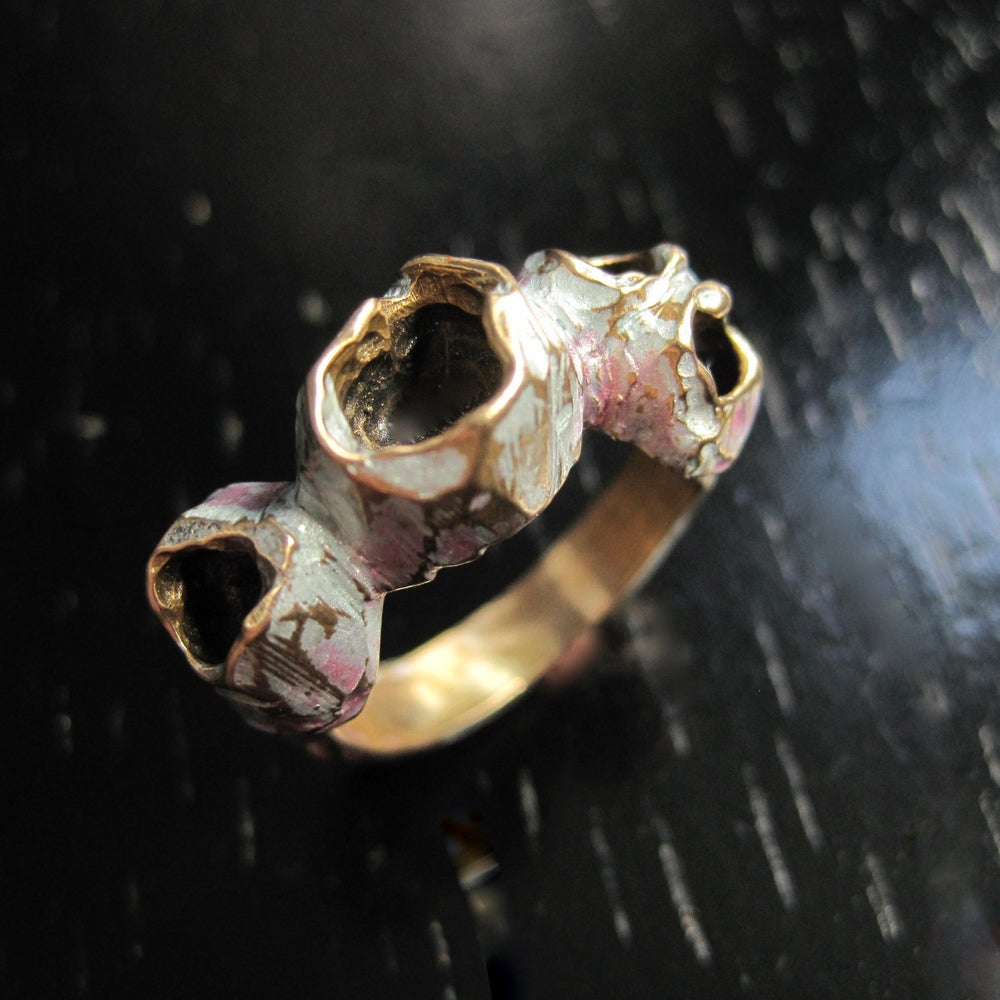 Image of Barnacle ring I