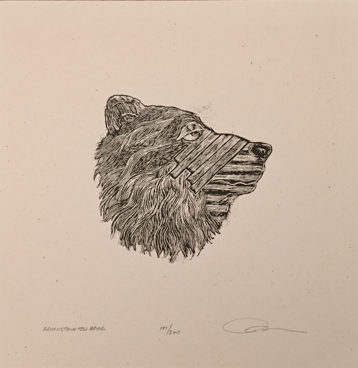 Reconstructed bear