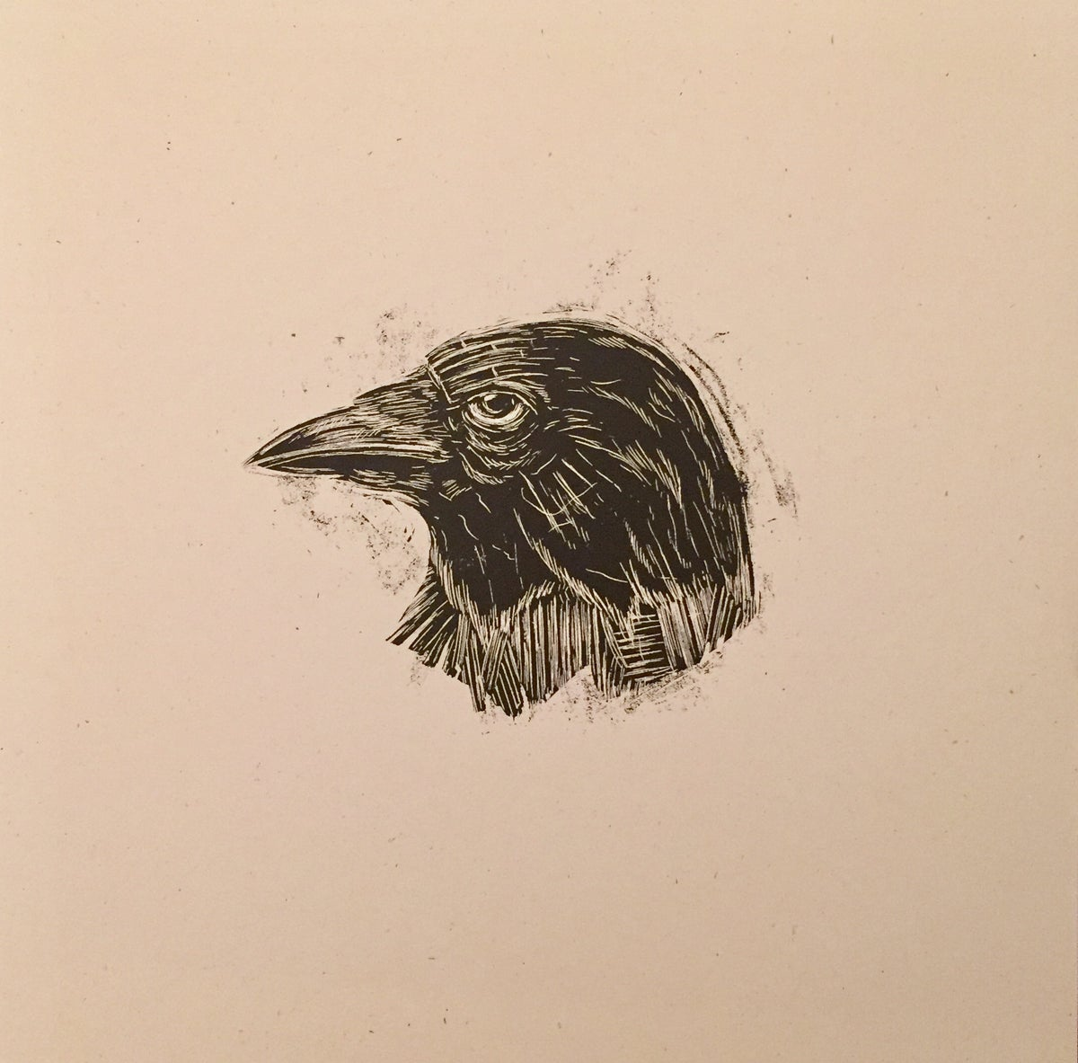 Reconstructed Crow