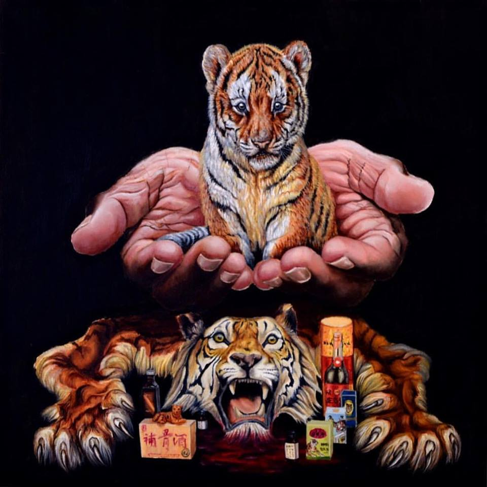 Image of In Our Hands - Tiger [Limited Edition Museum Print]