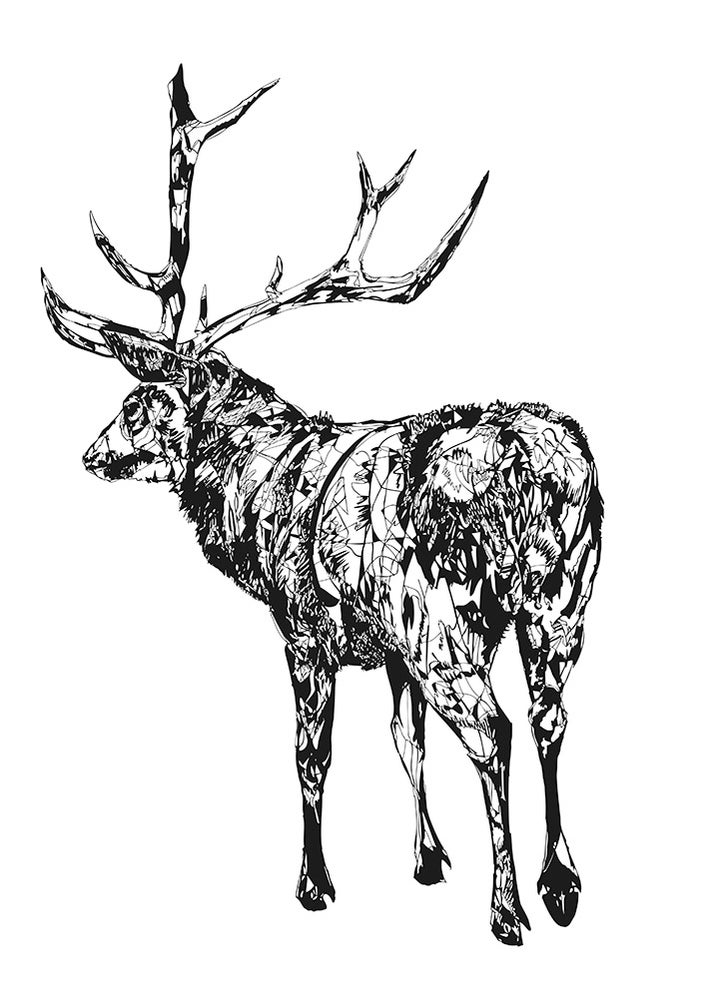 Image of Standing Stag (full) screen print