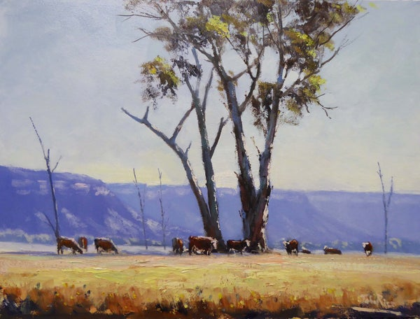 Image of Grazing In The Valley