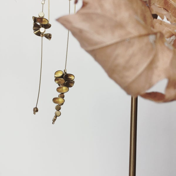 Image of Black Walnut Earrings