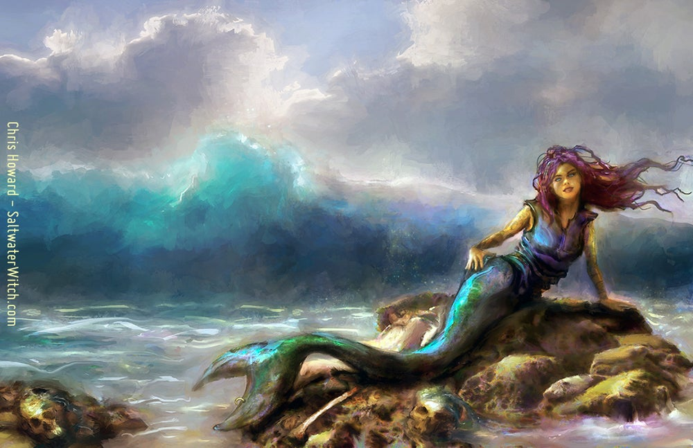 Image of Mermaid on the Rocks - Book Cover Art