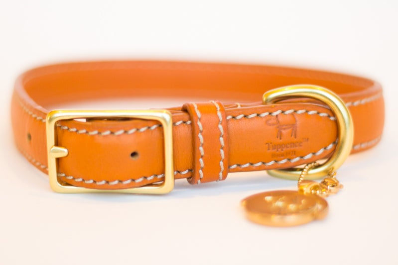 Image of Tuppence Collar - Terracotta