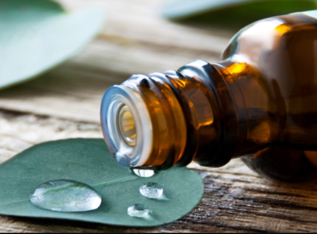 Image of 5ml Eucalyptus Essential Oil