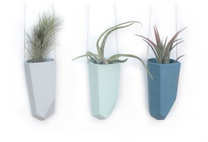 Image of skinny hanging crystal planter