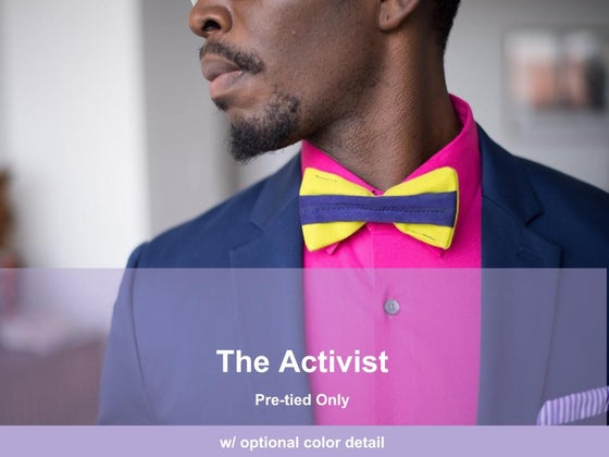 Image of The Activist