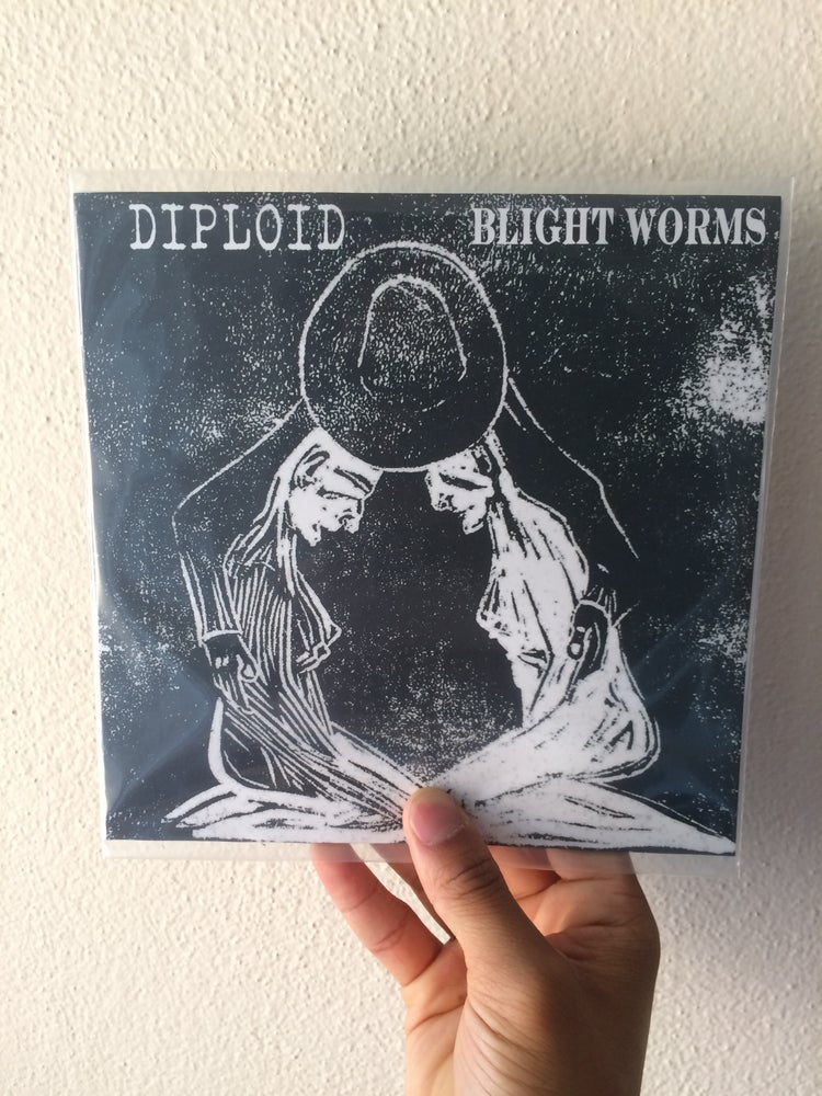 Image of Diploid & Blight Worms split 7""
