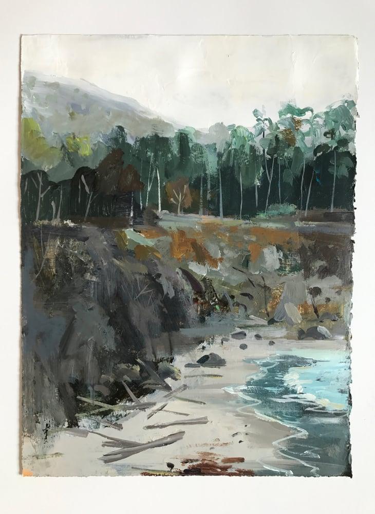 Image of West Coast Eucalyptus