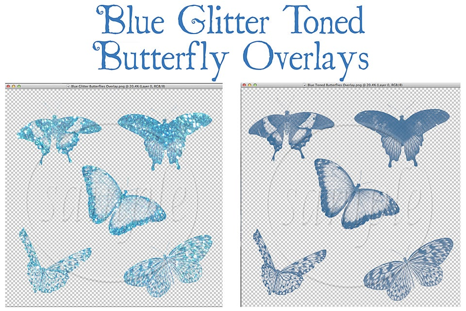 Image of Blue Glitter Toned Butterfly Overlays