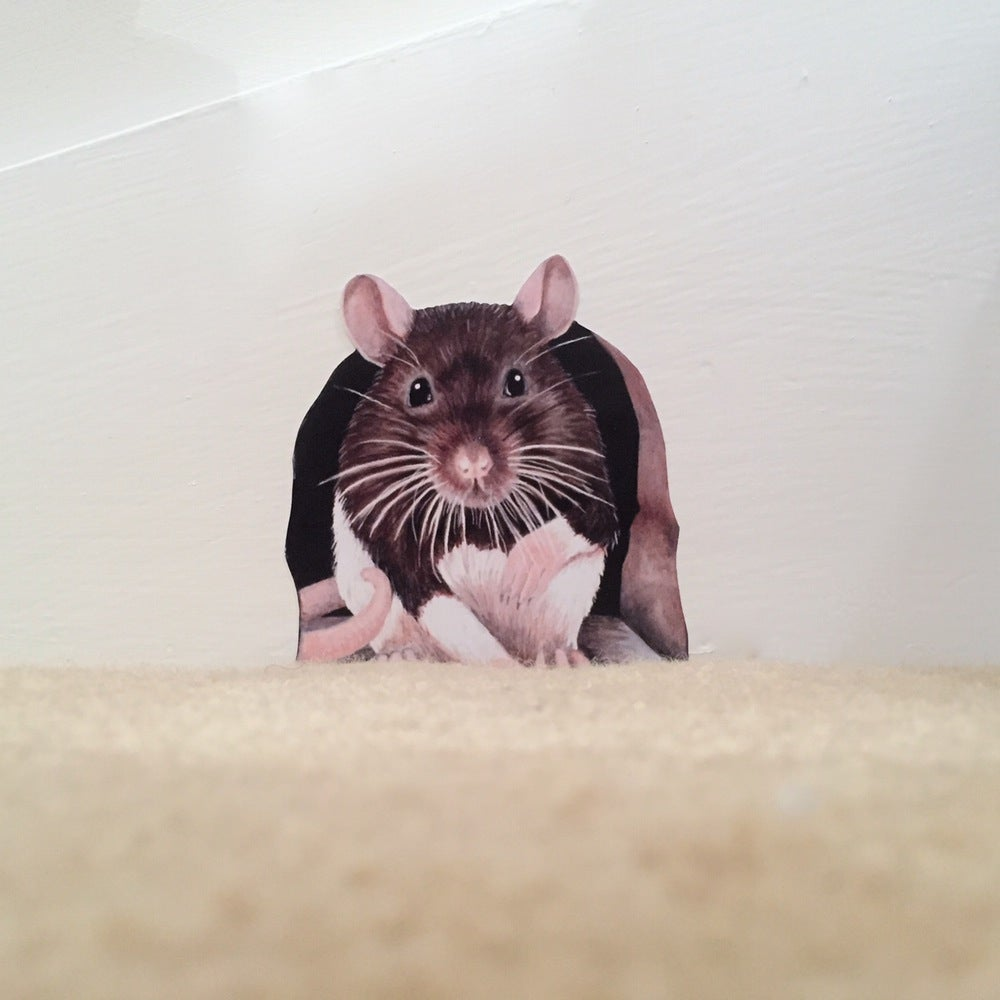 Image of Rathbone (Ratty) ~ Wall sticker decal