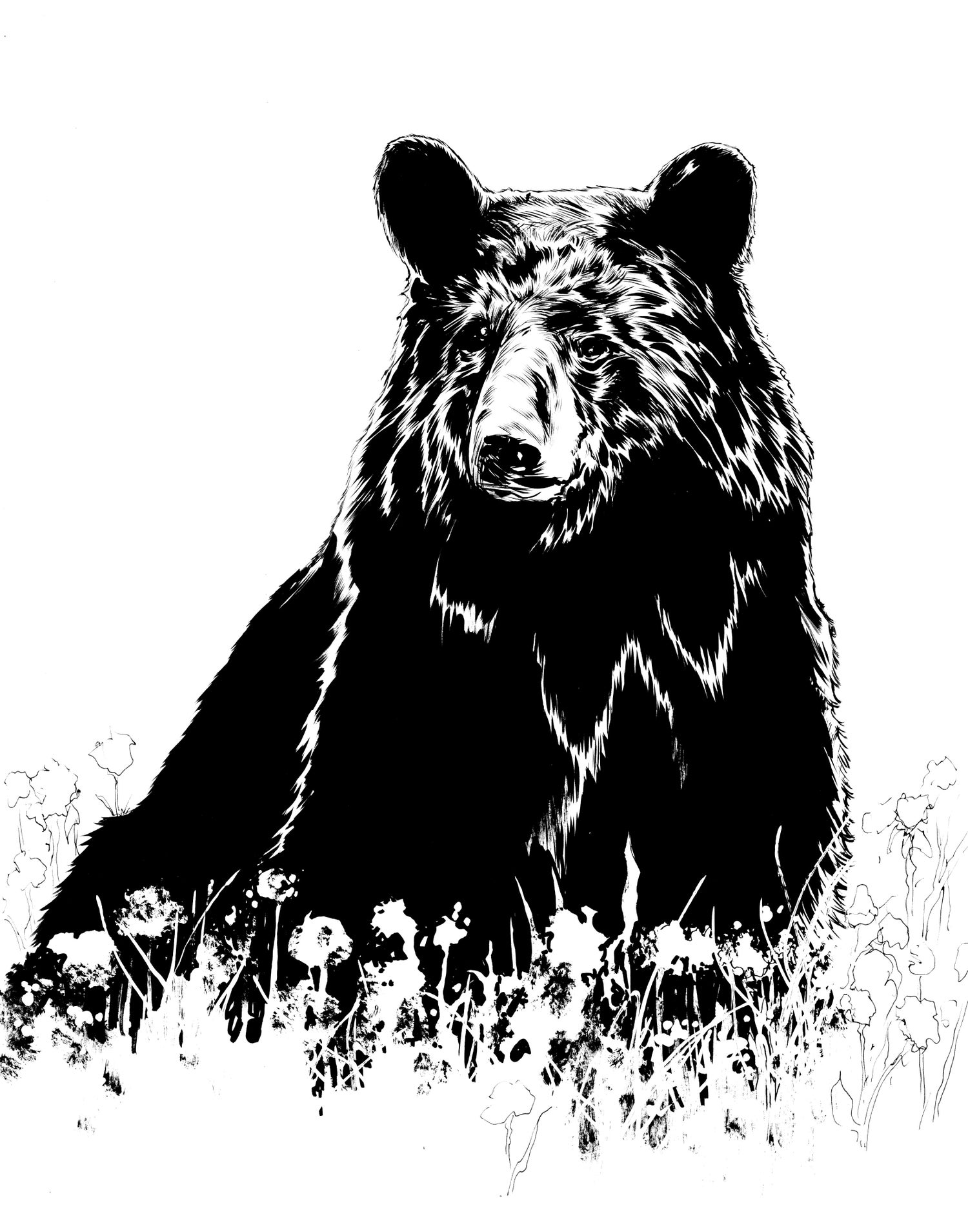 Image of bear inked production piece 11x14inches